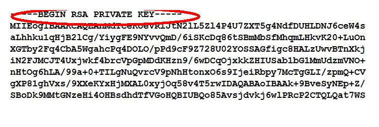 Do not use RSA Private Key